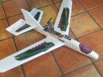 $9 glider.jpg