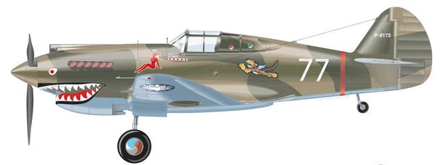 P40 AVG.jpg