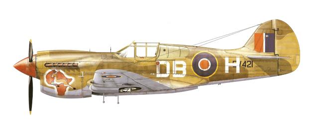 P40 SAAF.jpg