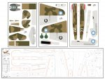 FT P40 Flyinf Tiger Skin Set Proof.jpg