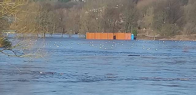 flooding.jpeg