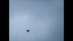Mustang flyby.png