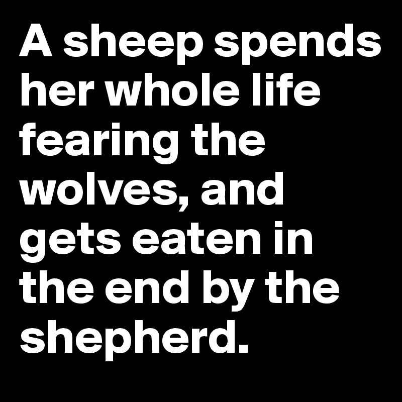 A-sheep-spends-her-whole-life-fearing-the-wolves-a.jpeg